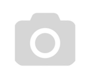 Мэттью Борн: Лебединое озеро